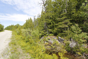 1.67 Ac. Building Lot! - Presented by Ashley Barker