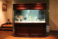 Aquarium Marineland 250 gallons extra-deep 36'' dimension