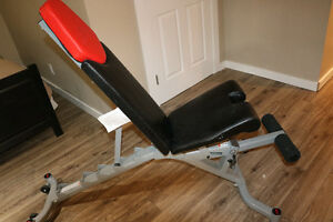 Bowflex Weight Bench - Excellent Condition (never used)