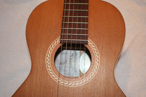 Ami Folk / Nylon Parlour Guitar Package, w/ Case & Book Kitchener / Waterloo Kitchener Area image 5