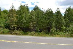 ***New Price***Build Your Dream Home Near Bobcaygeon***