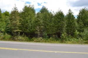 ***Build Your Dream Home Near Bobcaygeon***