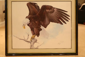 Glen Loates Bald Eagle suite (Artist Proof - 25) (4 prints)