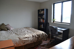 Large bedrooms in a furnished 2 BDR apartment available Jan 1st Kitchener / Waterloo Kitchener Area image 1