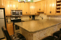 MILE END 3 BR SPACIOUS RENOVATED FULLY FURNISHED 5 1/2 PLATEAU