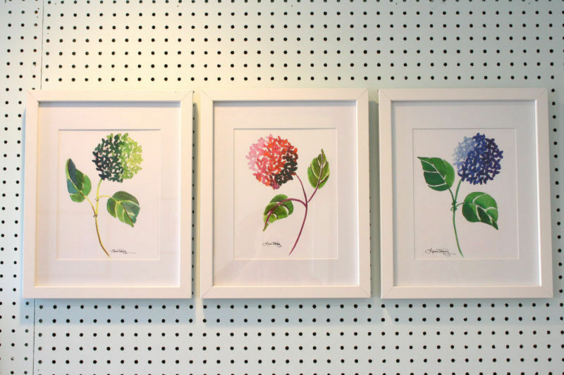 watercolors by laura trevey
