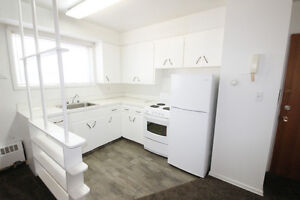 1 Bedroom Apartment For Rent March 1 Downtown