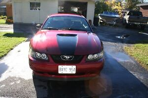 2000 Ford Mustang Coupe (2 door) Cornwall Ontario image 8