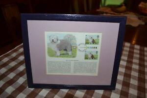 FIRST DAY ISSUE- OLD ENGLISH SHEEPDOG  STAMPS
