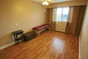 2bd 2bath 998sqft renovated with South Downtown View North Shore Greater Vancouver Area image 9