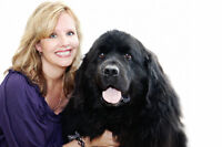 """The Pet Inn """"pay it forward program"""" for any pets in need!"""