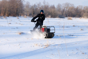 SNOW DOG: track Utility Vehicle