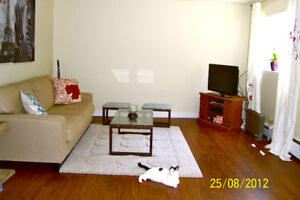 1 bdrm large, renovated, carpet and smoke free, Stanley Park