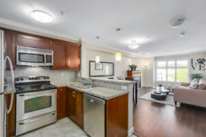 West facing private lovely sunny 1 bed/ 1 bth ,609 sq ft condo