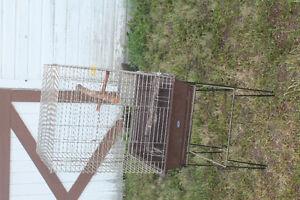 Bird Cage Regina Regina Area image 1