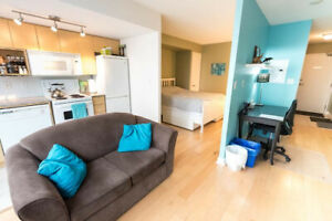 FURNISHED 1bdrm CN Tower & Lakefront View