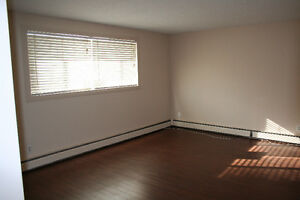 MAKE THIS 2 BEDROOM APARTMENT YOUR HOME IN ALLENDALE!