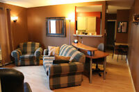 Fully Furnished Downtown 1 Bedroom Condo for Rent