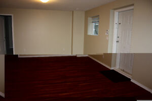 Legal basement suite for rent in Langley ( Walnut Grove)