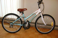 Woman's Triumph Raleigh Challenger Bicycle
