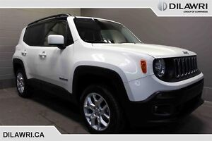 2015 Jeep Renegade 4x4 North