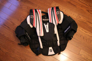 Goalie gear - pads, gloves, chest protector, pants and skates.