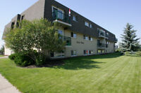 IMMEDIATELY - 1 Bedroom Available at Lakeside Chateau!