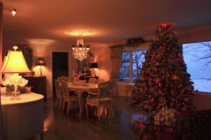 Niagara Luxury Waterfront Rental - Winter Vacation Getaway!