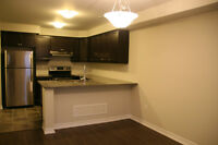 Brand New 3BR, 2.5 Bath Townhouse in Oakville for Rent