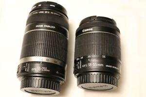 Canon EF-S 18-55mm IS STM and EF-S 55-250mm IS Lens Set