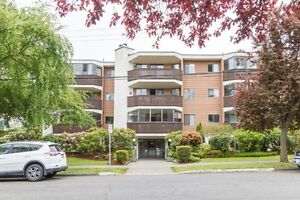 Spacious Sunny Southwest Corner Unit in Great Location!