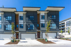 Brand New 3 Bed 3 Bath Townhouse in East Abbotsford For Rent!
