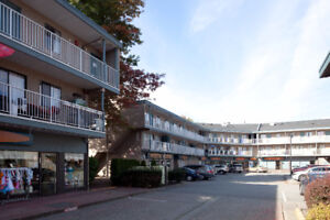 Tsawwassen and Ladner  - Prime Lease Space Available Now