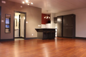 Executive bachelor downtown apartment Available Sept 1