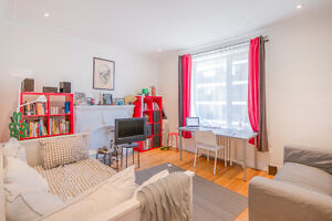 **McGill/Concordia Students** Beautifully Renovated 4 1/2!