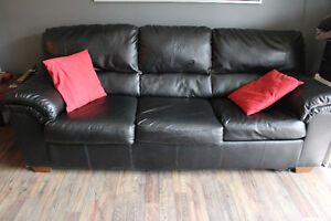 Black Pull Out Couch
