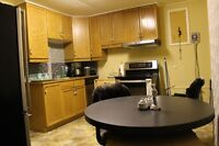 2 bedrooms lower appartment in a duplex house-Osoyoos BC