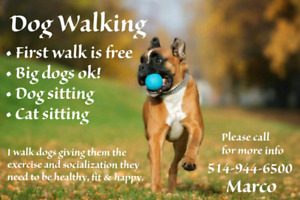 Dog Walking and Sitting Services - West Island