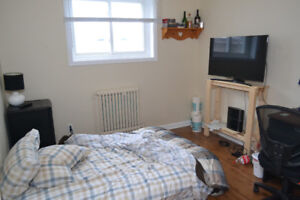 1 room available in 2 room downtown apt (sublet, Jan 1)