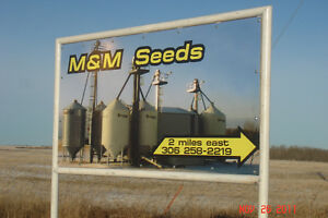 M&M Seeds Ltd. has the following seed available for 2017