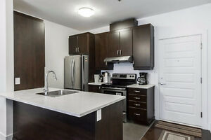 Downtown Furnished Spacious Condo near Metro (March 2017)