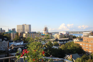 Furnished Downtown Penthouse, 1 BDR, Indoor Parking inc, SEPT.