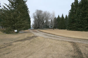 Beautiful Treed Acreage For Sale