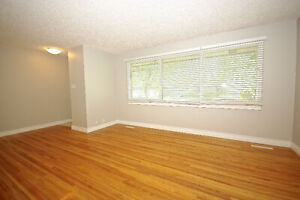 LOCATION *Wiggins Ave* Mint 3 bed - Util INCLUDED