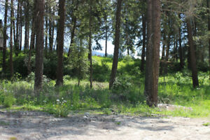 Gorgeous 0.6 acre lot in Woodland Heights, Salmon Arm