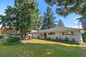 WHOLE HOUSE FOR RENT - METROTOWN
