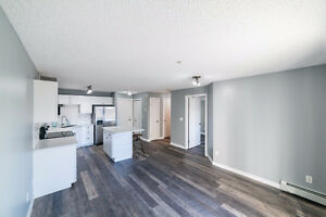 Modern 1 Bed & 1 Bath Condo close to Brewery District & 124 St Edmonton Edmonton Area image 3