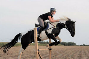 Travelling Riding Instructor