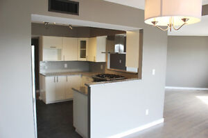 Downtown fully renovated 2 bedroom Condo