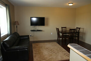 New & Furnished 1 bedroom apartment for rent in Estevan area Regina Regina Area image 3